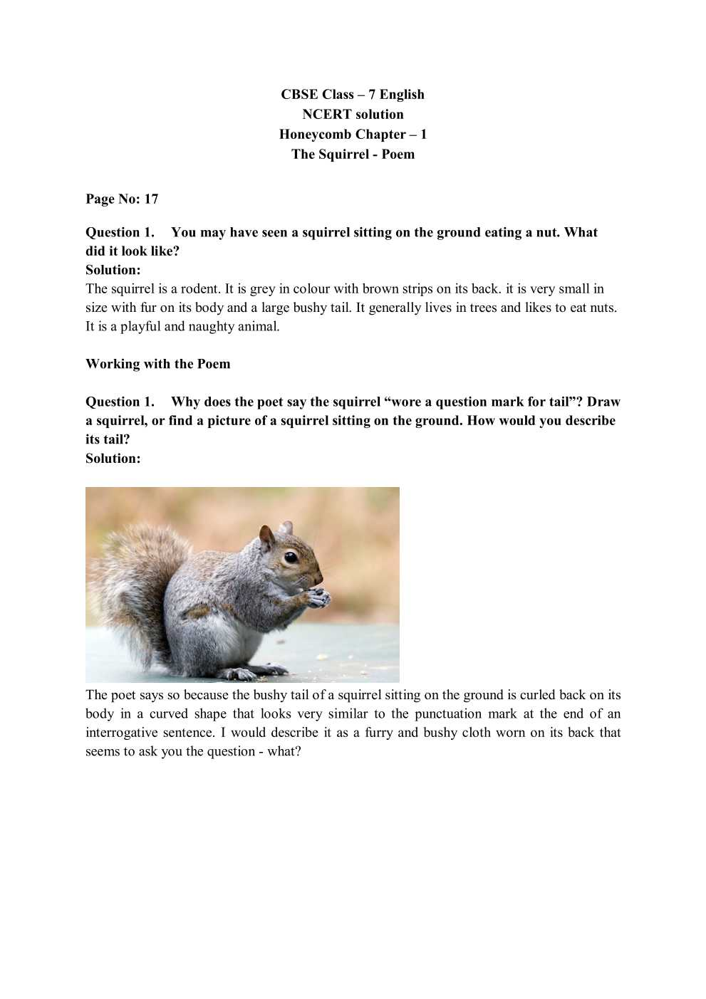 NCERT Solutions For Class 7 English Honeycomb Poem Chapter 1 The Squirrel