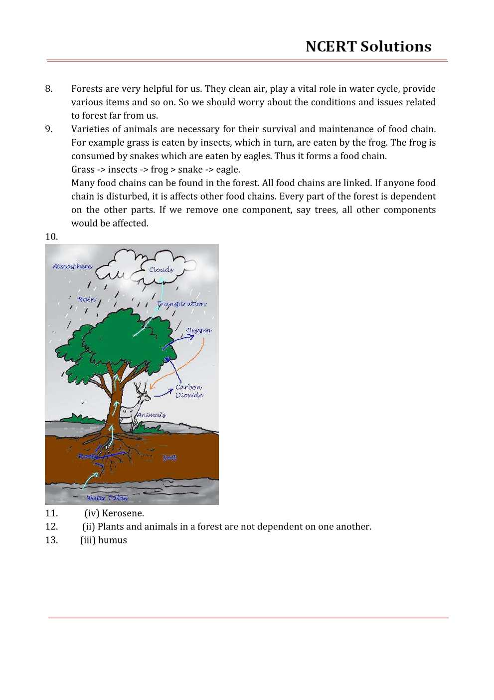 NCERT Solutions For Class 7 science Chapter 17 Forests – Our Lifeline